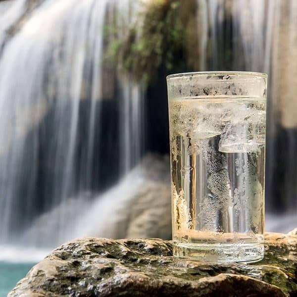 Jungle Freeze E-juice Flavour by Mt Baker Vapor International
