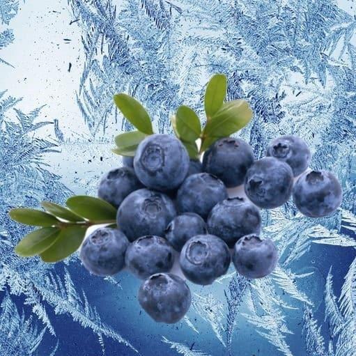 Mountain Huckleberry Ice E-juice Flavour | Mt Baker Vapor International