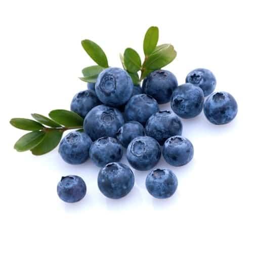 Mountain Huckleberry E-juice Flavour | Mt Baker Vapor International
