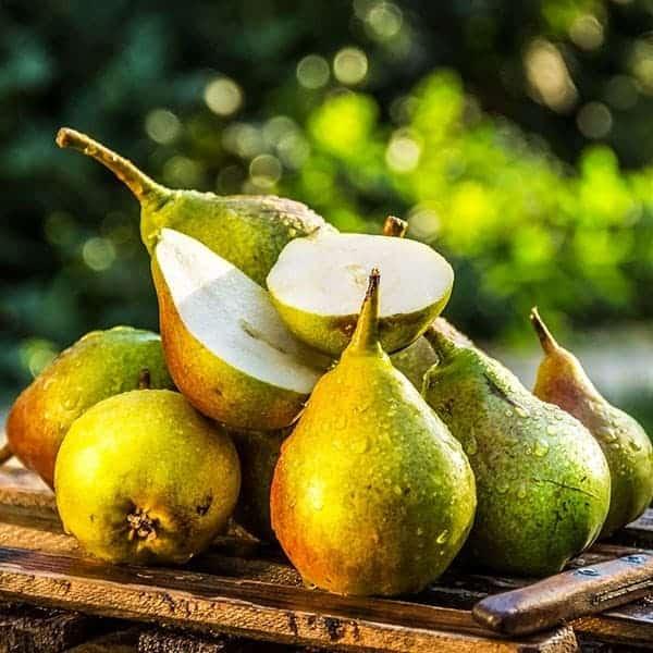 Pacific Pear E-juice Flavour by Mt Baker Vapor International
