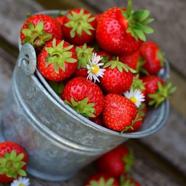 Wild Strawberry E-juice Flavour | Mt Baker Vapor International